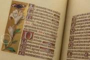 La Flora - Book of Hours, Naples, Biblioteca Nazionale Vittorio Emanuele III, Ms. I.B.51 − Photo 19