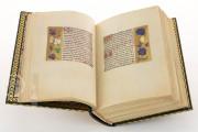 La Flora - Book of Hours, Naples, Biblioteca Nazionale Vittorio Emanuele III, Ms. I.B.51 − Photo 23