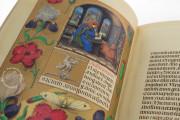 La Flora - Book of Hours, Naples, Biblioteca Nazionale Vittorio Emanuele III, Ms. I.B.51 − Photo 24