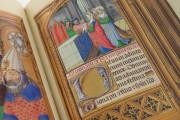 La Flora - Book of Hours, Naples, Biblioteca Nazionale Vittorio Emanuele III, Ms. I.B.51 − Photo 26