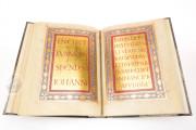 Lorsch Gospels Pal. lat. 50 - Biblioteca Apostolica Vaticana;  Biblioteca Documentara Batthyaneum; Inv. Nr. 138-1866 - Victoria and Albert Museum (London, United Kingdom) − photo 8