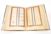 Lorsch Gospels Pal. lat. 50 - Biblioteca Apostolica Vaticana;  Biblioteca Documentara Batthyaneum; Inv. Nr. 138-1866 - Victoria and Albert Museum (London, United Kingdom) − photo 13