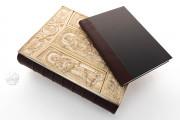 Lorsch Gospels Pal. lat. 50 - Biblioteca Apostolica Vaticana;  Biblioteca Documentara Batthyaneum; Inv. Nr. 138-1866 - Victoria and Albert Museum (London, United Kingdom) − photo 24