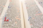 Gutenberg Bible - Pelplin copy, Pelplin, Biblioteka Seminarium Duchownego, Hub. 28 − Photo 8