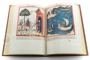 Tacuinum Sanitatis in Medicina, Codex Vindobonensis S. N. 2644 - Österreichische Nationalbibliothek (Vienna, Austria) Österreichische Nationalbibliothek (Vienna, Austria) − photo 4