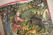 Tacuinum Sanitatis in Medicina, Codex Vindobonensis S. N. 2644 - Österreichische Nationalbibliothek (Vienna, Austria) Österreichische Nationalbibliothek (Vienna, Austria) − photo 6