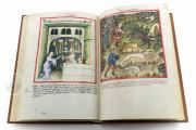Tacuinum Sanitatis in Medicina, Codex Vindobonensis S. N. 2644 - Österreichische Nationalbibliothek (Vienna, Austria) Österreichische Nationalbibliothek (Vienna, Austria) − photo 7