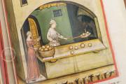 Tacuinum Sanitatis in Medicina, Codex Vindobonensis S. N. 2644 - Österreichische Nationalbibliothek (Vienna, Austria) Österreichische Nationalbibliothek (Vienna, Austria) − photo 9