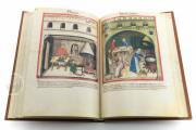 Tacuinum Sanitatis in Medicina, Codex Vindobonensis S. N. 2644 - Österreichische Nationalbibliothek (Vienna, Austria) Österreichische Nationalbibliothek (Vienna, Austria) − photo 10