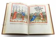 Tacuinum Sanitatis in Medicina, Codex Vindobonensis S. N. 2644 - Österreichische Nationalbibliothek (Vienna, Austria) Österreichische Nationalbibliothek (Vienna, Austria) − photo 11