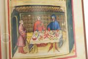 Tacuinum Sanitatis in Medicina, Codex Vindobonensis S. N. 2644 - Österreichische Nationalbibliothek (Vienna, Austria) Österreichische Nationalbibliothek (Vienna, Austria) − photo 12