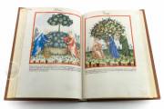 Tacuinum Sanitatis in Medicina, Codex Vindobonensis S. N. 2644 - Österreichische Nationalbibliothek (Vienna, Austria) Österreichische Nationalbibliothek (Vienna, Austria) − photo 13