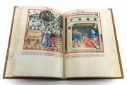 Tacuinum Sanitatis in Medicina, Codex Vindobonensis S. N. 2644 - Österreichische Nationalbibliothek (Vienna, Austria) Österreichische Nationalbibliothek (Vienna, Austria) − photo 15