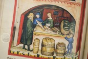 Tacuinum Sanitatis in Medicina, Codex Vindobonensis S. N. 2644 - Österreichische Nationalbibliothek (Vienna, Austria) Österreichische Nationalbibliothek (Vienna, Austria) − photo 16