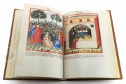 Tacuinum Sanitatis in Medicina, Codex Vindobonensis S. N. 2644 - Österreichische Nationalbibliothek (Vienna, Austria) Österreichische Nationalbibliothek (Vienna, Austria) − photo 17