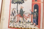 Tacuinum Sanitatis in Medicina, Codex Vindobonensis S. N. 2644 - Österreichische Nationalbibliothek (Vienna, Austria) Österreichische Nationalbibliothek (Vienna, Austria) − photo 18