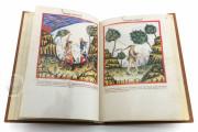 Tacuinum Sanitatis in Medicina, Codex Vindobonensis S. N. 2644 - Österreichische Nationalbibliothek (Vienna, Austria) Österreichische Nationalbibliothek (Vienna, Austria) − photo 19