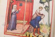 Tacuinum Sanitatis in Medicina, Codex Vindobonensis S. N. 2644 - Österreichische Nationalbibliothek (Vienna, Austria) Österreichische Nationalbibliothek (Vienna, Austria) − photo 20