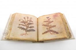 Vienna Dioscorides Facsimile Edition
