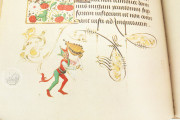 Hours of Mary of Burgundy, Vienna, Österreichische Nationalbibliothek, Codex Vindobonensis 1857 − Photo 6