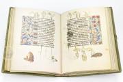 Hours of Mary of Burgundy, Vienna, Österreichische Nationalbibliothek, Codex Vindobonensis 1857 − Photo 11