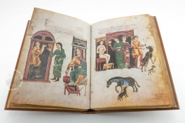 Medicina Antiqua Facsimile Edition