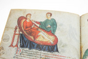 Medicina Antiqua, Codex Vindobonensis 93 - Österreichische Nationalbibliothek (Vienna, Austria) − photo 10
