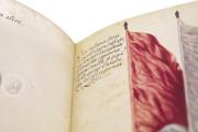 Das Kostümbuch des Lambert de Vos, Ms. or. 9 - Bremen Staats und Universitatsbibliothek (Germany) − photo 10