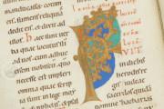Golden Book of Pfäfers, St. Gallen, Stiftsarchiv St. Gallen, Codex Fabariensis 2 − Photo 5