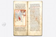 Die Vita Sancti Liudgeri, Ms. theol. lat. fol. 323 - Staatsbibliothek Preussischer Kulturbesitz zu Berlin (Germany) − Photo 5