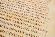 Vergilius Augusteus, Berlin, Staatsbibliothek Preussischer Kulturbesitz, Cod. Lat. fol. 416 Vatican City, Biblioteca Apostolica Vaticana, Cod. Vat. lat. 3256 − Photo 12