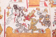Codex Zouche-Nuttall, Add. Mss. 39671 - British Museum (London, United Kingdom) − photo 13