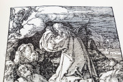 Albrecht Dürer - Small xilographic Passion - Nuremberg, 1511, Private Collection − Photo 12