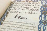 Codice Stivini - Inventory of the possessions of Isabella d'Este, Mantua, Archivio di Stato di Mantova, Inv. b. 400 − Photo 9