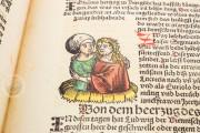 Weltchronik - The chronicles of Nuremberg, Weimar, Herzogin Anna Amalia Bibliothek  − Photo 4