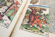 Weltchronik - The chronicles of Nuremberg, Weimar, Herzogin Anna Amalia Bibliothek  − Photo 15