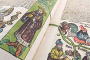 Weltchronik - The chronicles of Nuremberg, Weimar, Herzogin Anna Amalia Bibliothek  − Photo 16