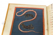 Aratea, Ms. Voss. Lat. Q. 79 - Bibliotheek der Rijksuniversiteit (Leiden, Netherlands) − photo 4