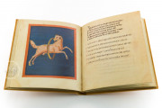 Aratea, Ms. Voss. Lat. Q. 79 - Bibliotheek der Rijksuniversiteit (Leiden, Netherlands) − photo 7