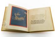 Aratea, Ms. Voss. Lat. Q. 79 - Bibliotheek der Rijksuniversiteit (Leiden, Netherlands) − photo 18