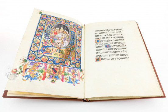 Pontifical of Boniface IX, Vatican City, Biblioteca Apostolica Vaticana, ms. vat. lat. 3747 − Photo 1