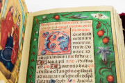 Hours of Mary Stuart, Ravenna, Biblioteca Classense, Ms. 62 − Photo 6
