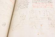 Life and Writings of Saint Francis of Assisi, Florence, Biblioteca Medicea Laurenziana, Gaddi 112 − Photo 7