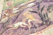 Ashburnham Pentateuch, Ms. Nouv. acq. lat. 2334 - Bibliothèque Nationale de France (Paris, France) − photo 11