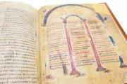 Ashburnham Pentateuch, Ms. Nouv. acq. lat. 2334 - Bibliothèque Nationale de France (Paris, France) − photo 17