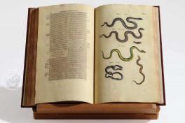 Historia Naturalis: De Exanguibus Acuaticis et Serpentibus Facsimile Edition