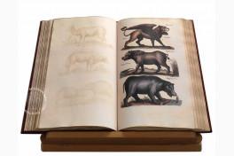 Historia Naturalis: De Quadrupedibus Facsimile Edition