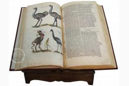 Historia Naturalis: De Avibus Facsimile Edition