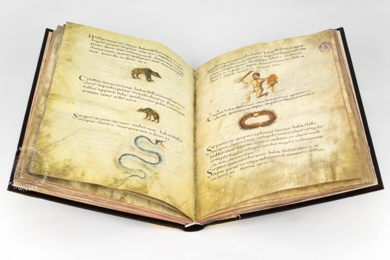 Metz Codex, Ms. n. 3307 - Biblioteca Nacional de España (Madrid, Spain) − photo 1