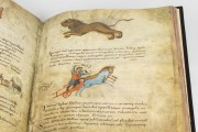 Metz Codex, Ms. n. 3307 - Biblioteca Nacional de España (Madrid, Spain) − photo 5